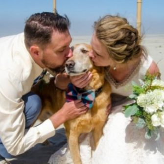 couple changes wedding plans for dying dog