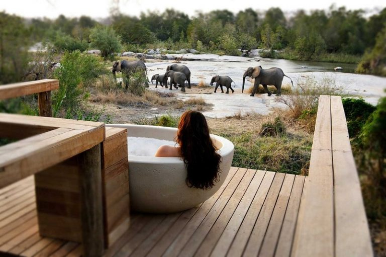 honeymoons in south africa londolozi