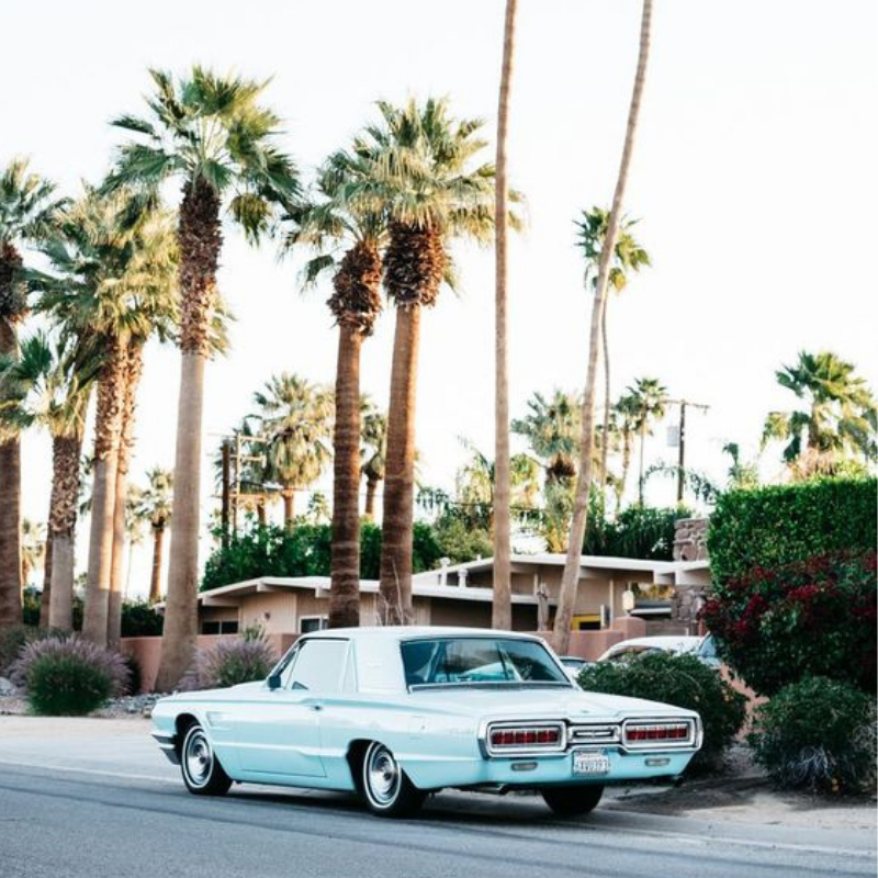 Instagram-Worthy-Honeymoon-Palm-Springs-California